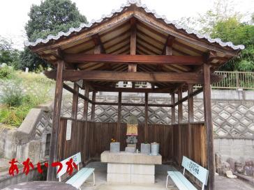 阿弥陀婆の池5