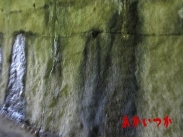 東山トンネル5