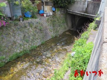 西土居処刑場跡(西の京処刑場跡)3