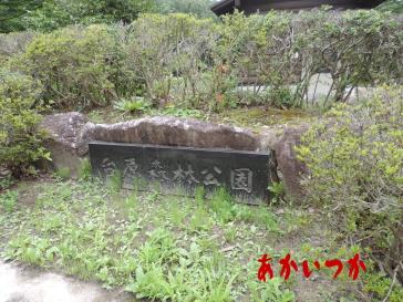 台原森林公園2