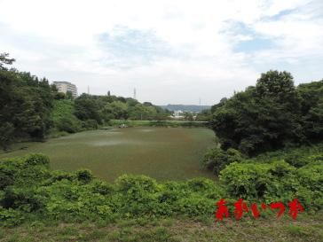 鶴ヶ谷中央公園3