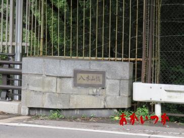 八木山橋10