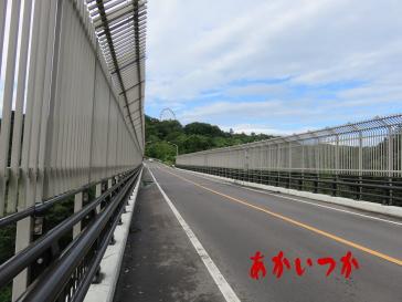 八木山橋11
