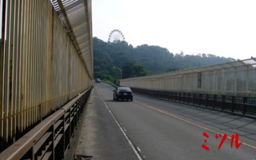 八木山橋5