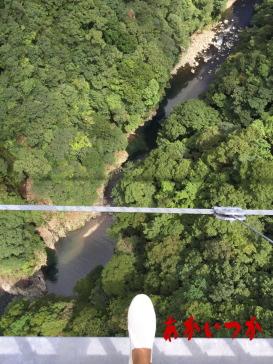 綾の照葉大吊橋8