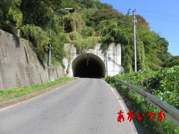 花上トンネル6