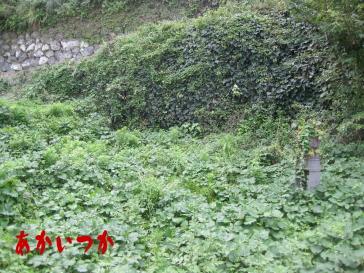 西坂処刑場跡5