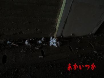 比礼隧道(榎峠)5