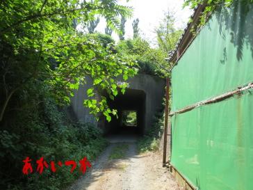 ホワイトハウスのトンネル