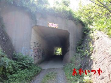 ホワイトハウスのトンネル2
