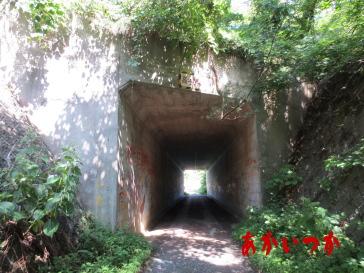 ホワイトハウスのトンネル6