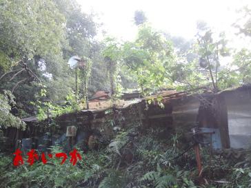 アンテナの家3