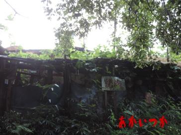 アンテナの家4