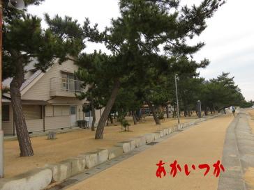 渋川海岸4