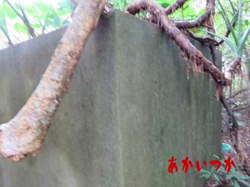 嵐山の廃墟11