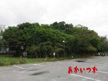 ガーナ―森(くじら山)
