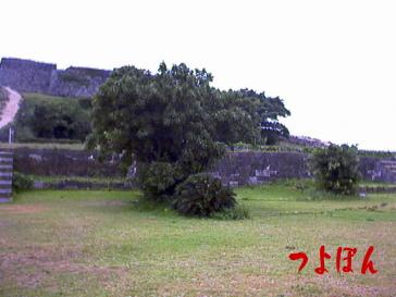 勝連城跡14