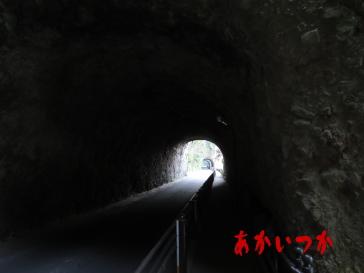 青の洞門6
