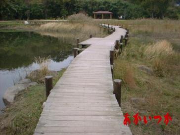 神楽女湖4