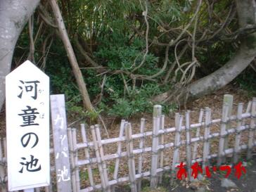 河童の墓6
