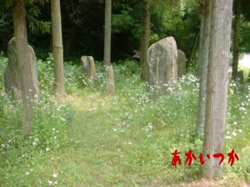 佐田の京石4