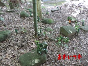 キリシタン墓群6