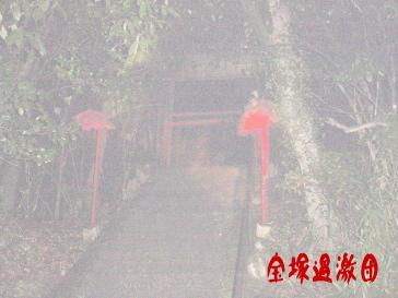チン電宝塚過激団4