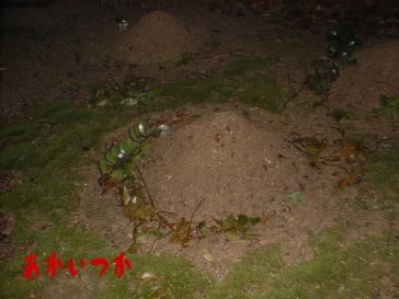 無縁墓地3