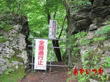 秩父湖の吊り橋3-2