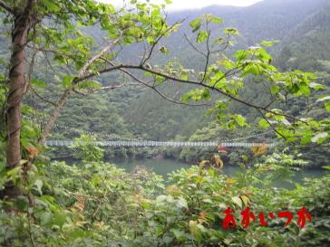 秩父湖の吊り橋3-3