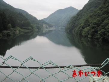 秩父湖の吊り橋3
