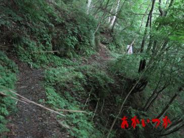 秩父湖の吊り橋4