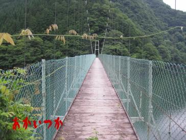 秩父湖の吊り橋6