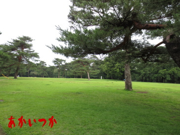 稲荷山公園2