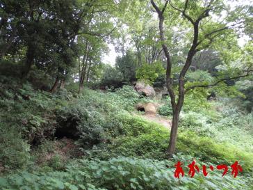 黒岩横穴群4