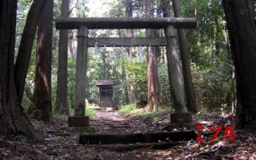 桜木神社3