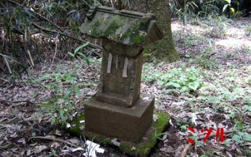 桜木神社4