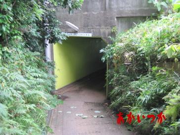 侍トンネル2