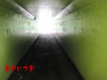 侍トンネル3
