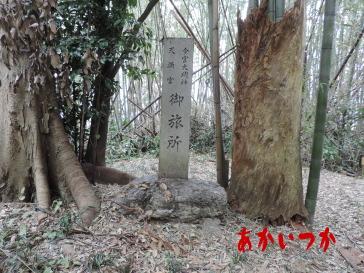 シガイの森6