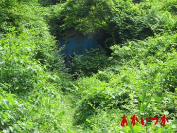 矢板トンネル2