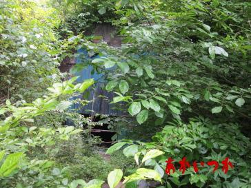 矢板トンネル3