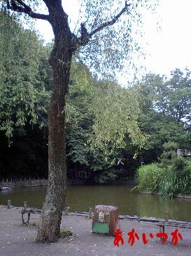 赤塚公園2