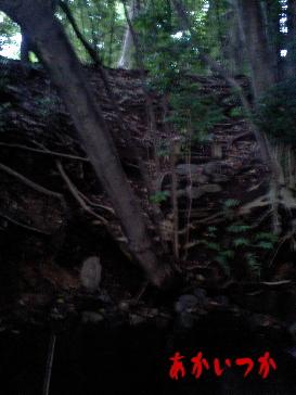 赤塚公園4