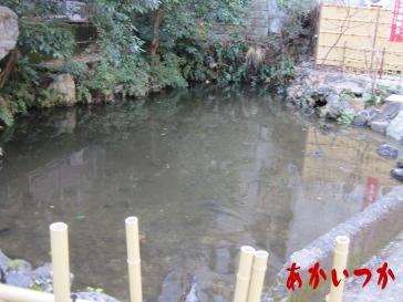 策の池(むちのいけ)2