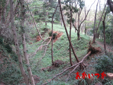 滝山城跡2