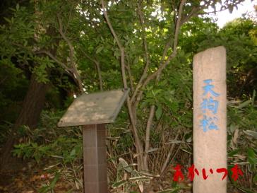 哲学堂公園10