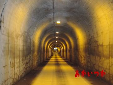 白倉トンネル2