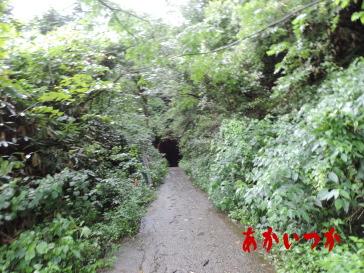 頭川トンネル(旧津々良トンネル)3