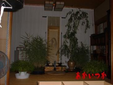 幽霊の掛け軸 永福寺4
